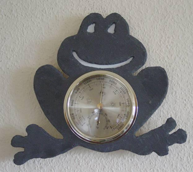 """Wetterstation Naturschiefer Motiv """"Wetter-Frosch"""""""